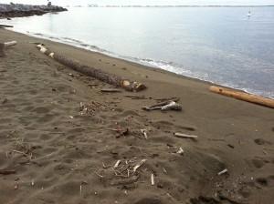 孤島のようなビーチ