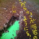 低糖質チョコラバケーキ