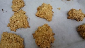 peanut butter cookie with truvia