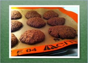 Chocolate Coconut Cookies made with erythritol