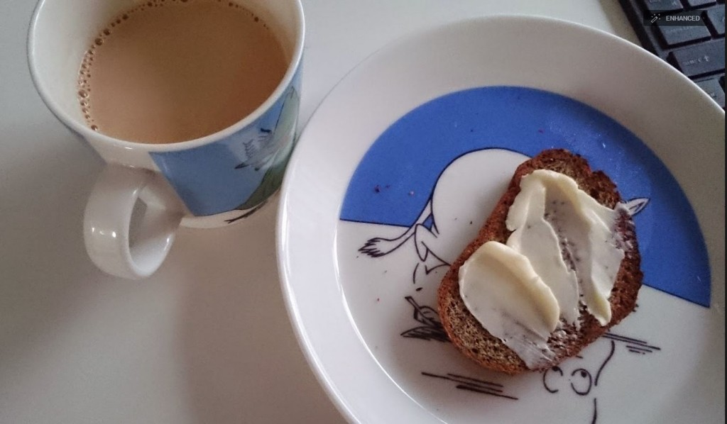 low carb soy flour and flax seed bread