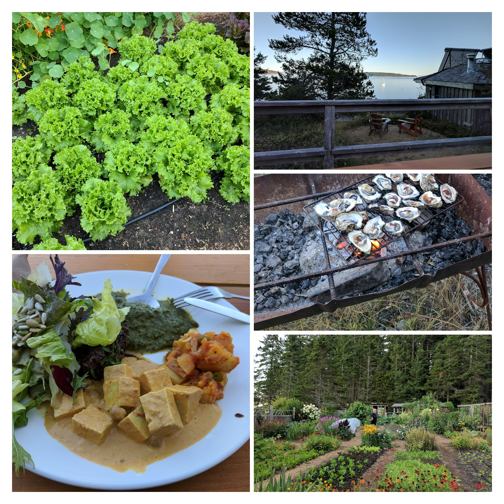 Indian Fare at Hollyhock Retreat Centre (Cortes Island)