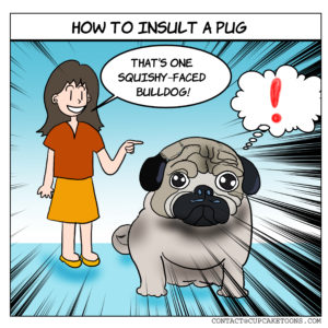 How To Insult A Pug