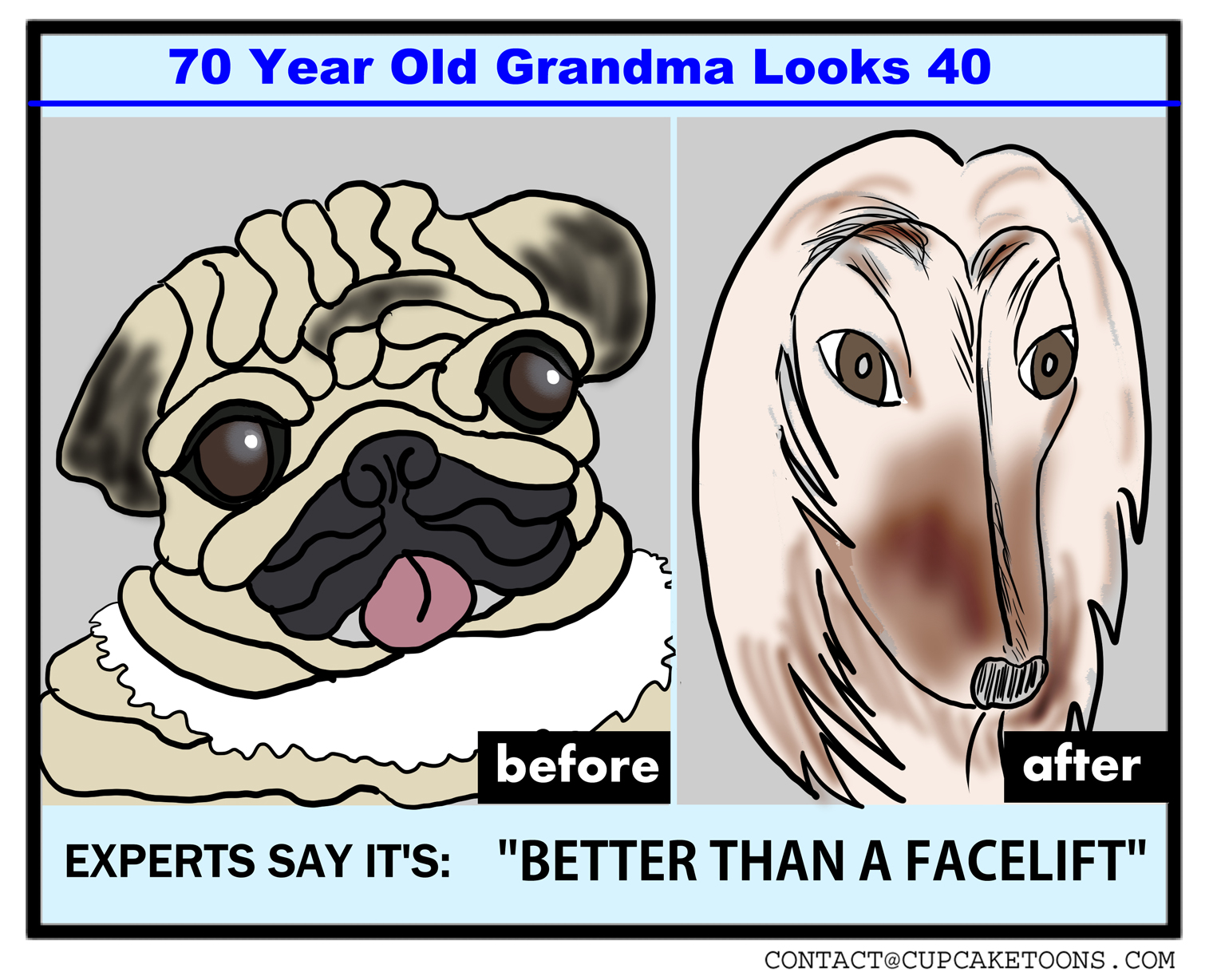 Wrinkle Cream Ad for Dogs