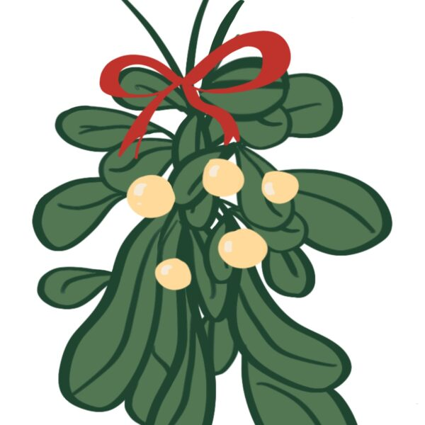 Mistletoe Iillustration